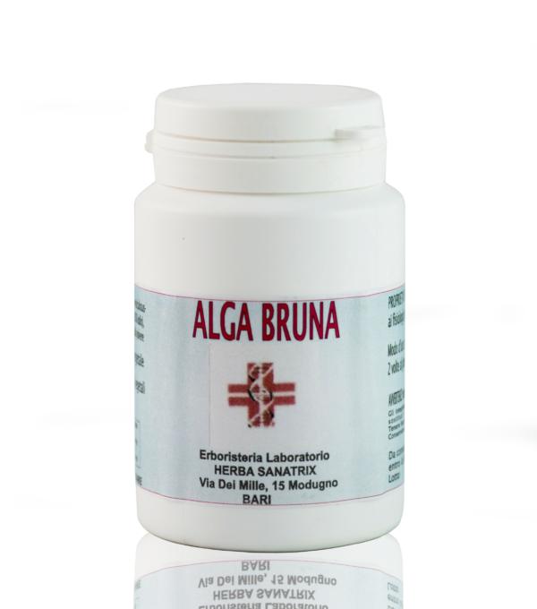 9.Alga-Bruna